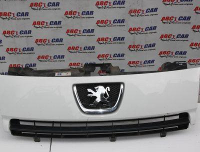 Grila bara fata Peugeot Expert 2 2007-2016