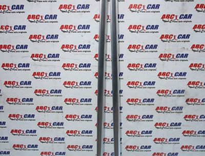 Bari longitudinale cromate Audi Q5 FY 2017-prezent 80A860021